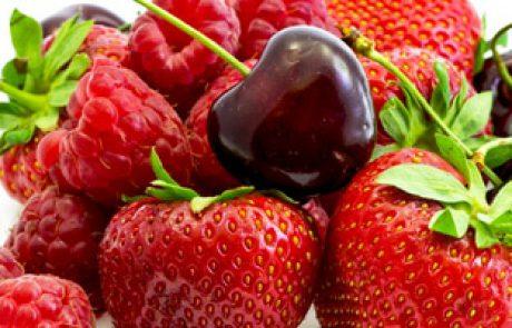 המלצות תזונה שלי למטופלות – חיזוק הדם